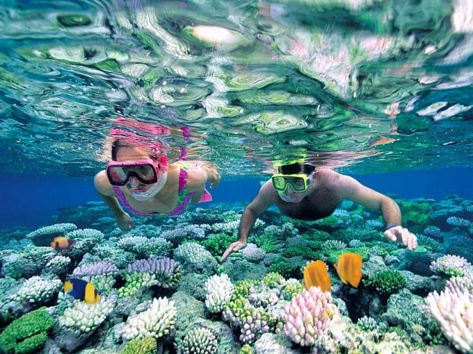 Những trải nghiệm không thể bỏ qua khi du lịch Nha Trang